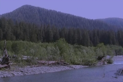 Hoh River with Olympic Mountains